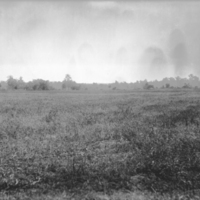 Agricultural Field OCT 1899.jpg
